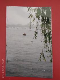 老照片,荡舟大明湖(署名:丁向阳,幸福杂志社)