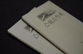 【毛边本】域外小说集(全二册  据北京鲁迅博物馆藏本影印)