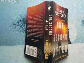 ONE SECOND AFTER :2009