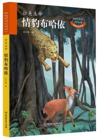 动物小说大王沈石溪致敬生命书系:壮美生命 情豹布哈依(儿童读物)