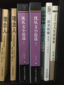 沈从文小说选上下——中国文库