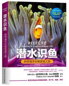 潜水识鱼【热点海洋生物发现之旅】