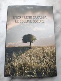 ENZO FILENO CARABBA LE COLLINE OSCURE