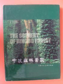 宁波森林景观