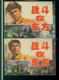 战斗在东方(上下)