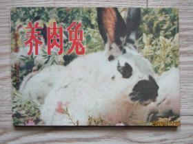 连环画:养肉兔[彩色电影版连环画 ]