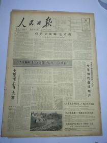 人民日报1965年12月31日