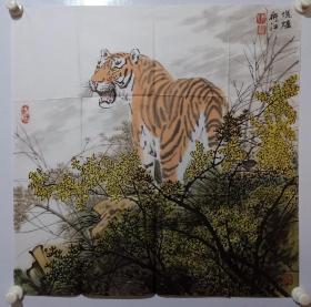 保真书画,当代画虎名家阴衍江国画《写意老虎》一幅,尺寸70×69cm