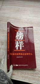 榜样 中国企业向世界级企业学什么
