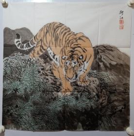 保真书画,当代画虎名家阴衍江国画《写意虎》一幅,尺寸69×68.5cm