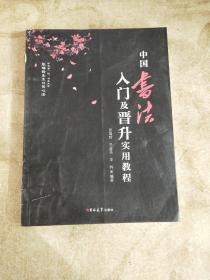 中国书法入门及晋升实用教程