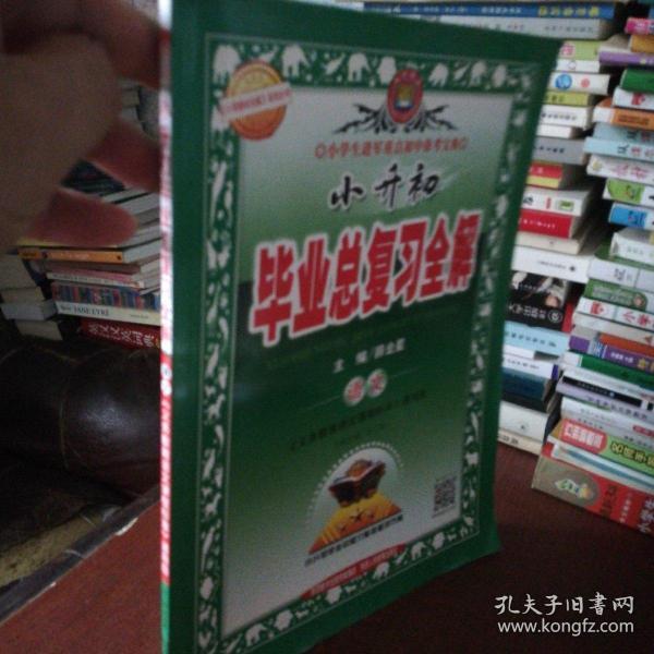 小升初毕业总复习全解 语文 2017春