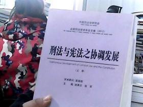 刑法与宪法之协调发展(上卷)