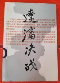 辽沈决战.续集