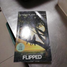 Flipped怦然心动