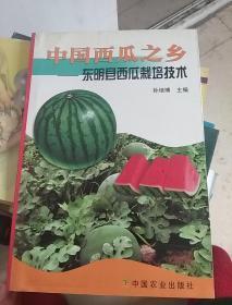 中国西瓜之乡:东明县西瓜栽培技术