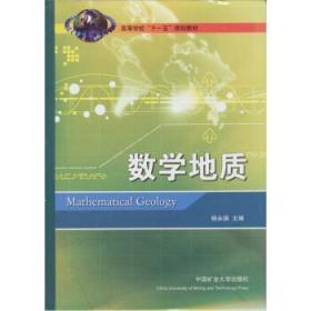 二手数学地质 杨永国 9787564605858 中国矿业出版社