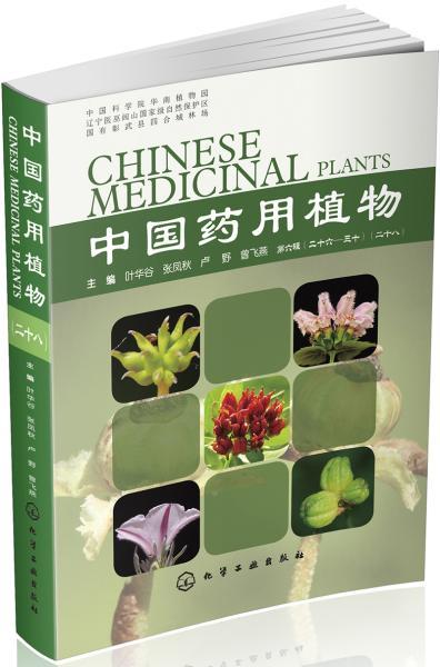 中国药用植物(28)