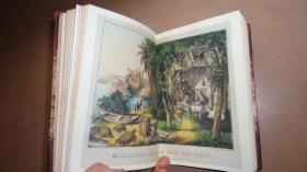 1885年DANIEL DEFOE - ADVENTURES OF ROBINSON CRUSOE - 丹尼尔•笛福《鲁滨逊漂流记》插图本 3/4摩洛哥真皮古董书 大量精美插图