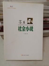 新文艺·中国现代文学大师读本:茅盾·社会小说