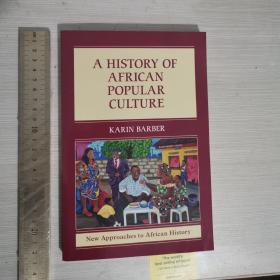 A history of African popular culture 非洲流行文化史 英文原版