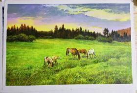 朝鲜油画 一级画家 高银姬画   放马