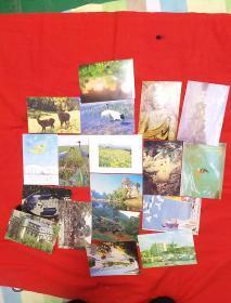 明信片,廘,人物,鹤好几种共18枚合售,后面有字,以图片为准