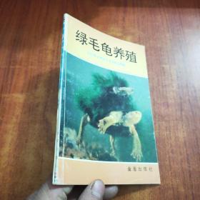 绿毛龟养殖