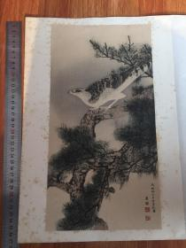 ※圆山应举※雄鹰图※1926年限量发行高级套色木版画※
