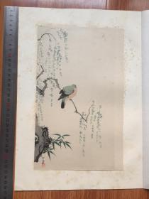 ※狩野常信※斑鸠图※1926年限量发行高级套色木版画※