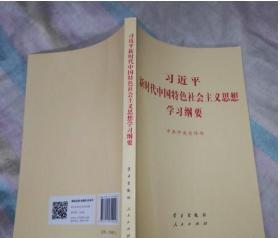 2019年习近平新时代中国特色社会主义思想学习纲要 小字本