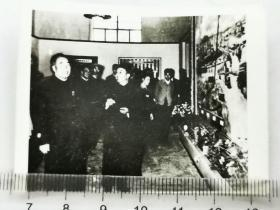 1959前后,朱德在曾希圣陪同下参观省博物馆