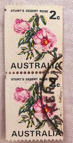 澳大利亚植物花卉邮票(信销票)沙漠玫瑰2张