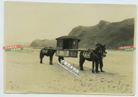 民国河北山东一带具有鲜明特色的前后双马马车交通工具老照片,15.8X11.2厘米