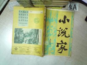 小说家 1985 1