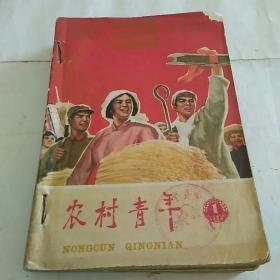 农村青年1966年第1~14期合售