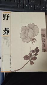 不能没有你(中国作家档案书系 第1辑)