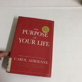 The Purpose of Your Life)精装