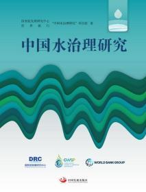 中国水治理研究