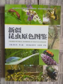 【有目录图片,请看图】新疆昆虫原色图鉴