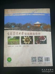 吉林农业大学校园蘑菇图册