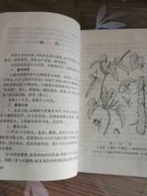 《中药材栽培技术》1976年带毛主席语录