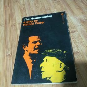 The Homeconming a play by Harold pinter