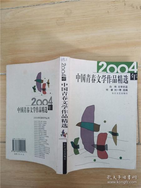 2004年中国青春文学作品精选
