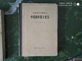 中国的叶肢介化石:中国各门类化石