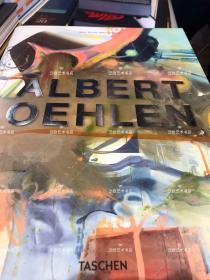 Albert Oehlen 阿尔伯特·厄伦作品全集 精装 大16 开 496页 2017 年