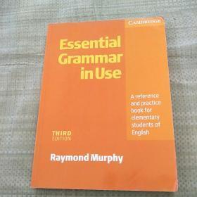 Essential Grammar in Use THIRD EDITION(基本语法使用 第三版)平装有勾画