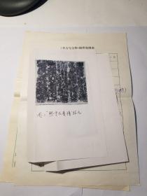 李清洪手稿(东阿发现宋代香幢石刻)