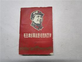 毛主席的革命路线胜利万岁——党内两条路线斗争大事记