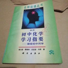 初中化学学习指要名师启迪丛书